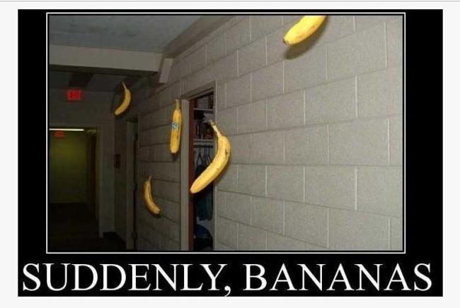 20100118 Sudden bananas
